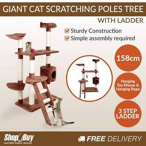 Brand New: 158cm Cat Scratching Poles Tree Multi Level Scratcher Sydney City Inner Sydney Preview