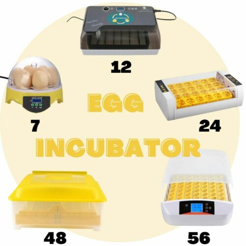7/12/24/48/56 Automatic Eggs Turning Digital LED Display with Light Upgrade