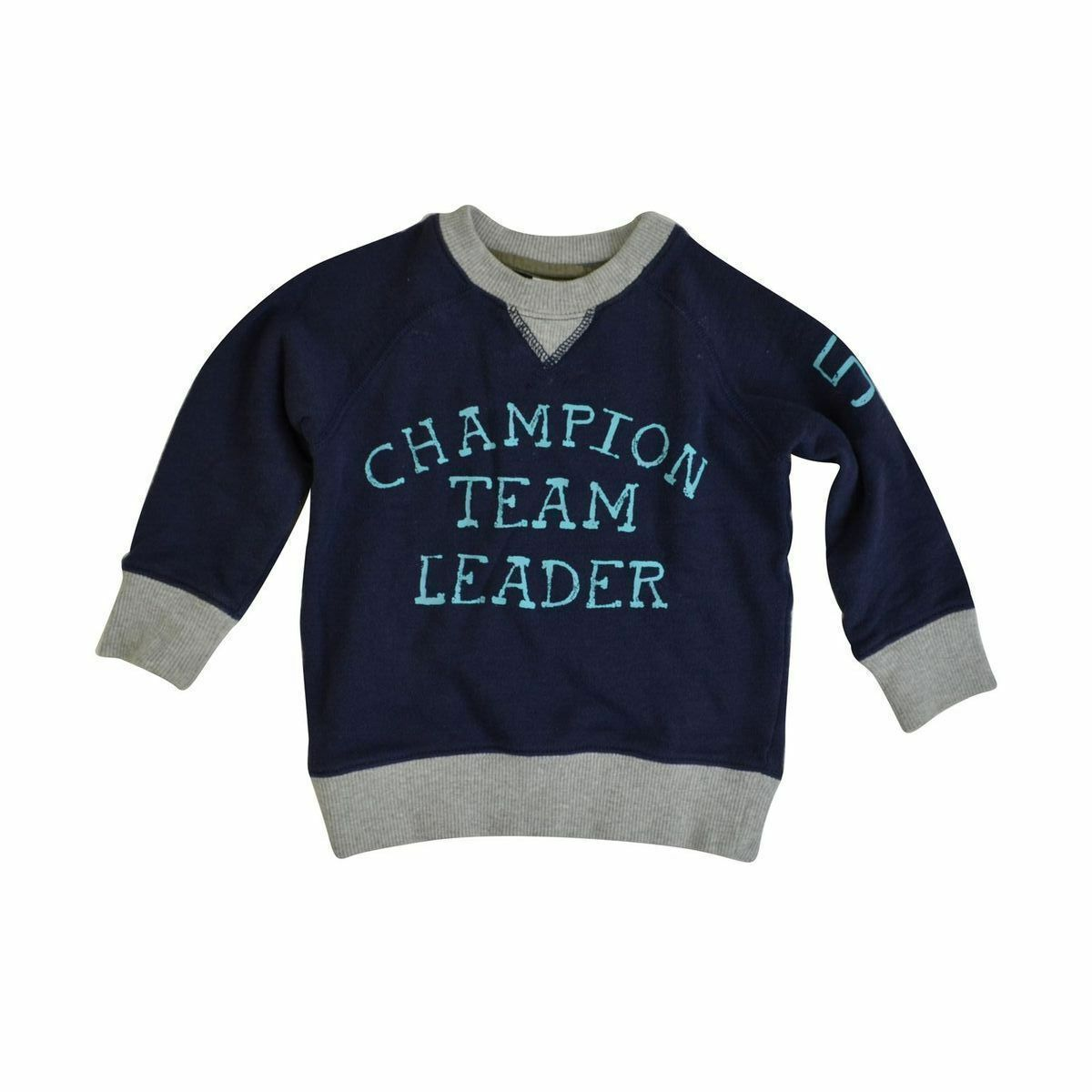 85f5a5cf6 Details about NWOT Carter's Toddler Boy's Pull Over Sweater Navy Grey 2T