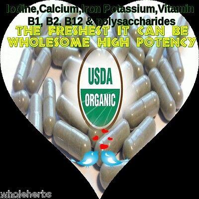 - KELP SEA WEED IODINE Fresh Atlantic CERTIFIED ORGANIC 100 X V CAPSULES 595 mg