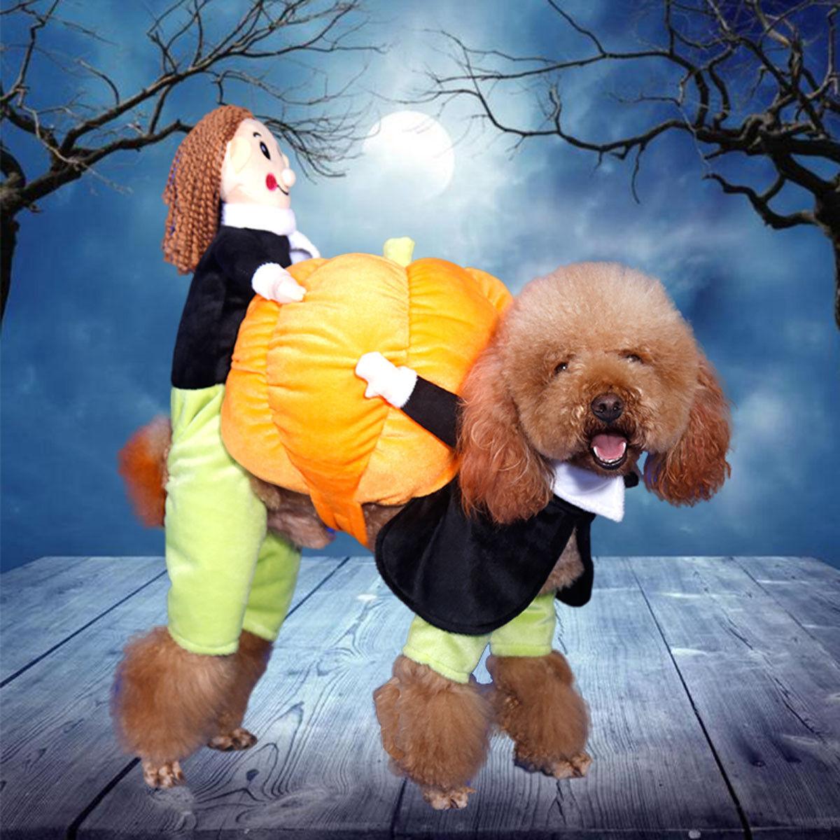 Dog Carry Pumpkin Costume Halloween Cat Pet Fancy Puppy Apparel Jacket Clothes