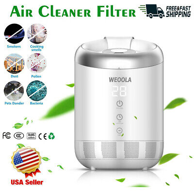 4L Big Ultrasonic Humidifier Best Cool Mist Large Rooms Home with 12H Timing (Best Cool Mist Humidifier)