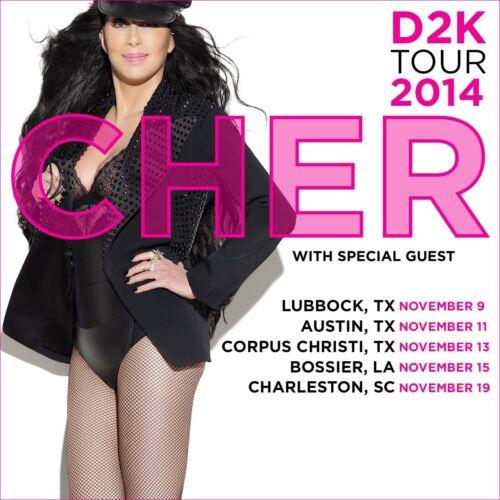 "CHER ""D2K TOUR 2014"" U.S. CONCERT POSTER - Pop Music Disco Diva, Comeback Queen"