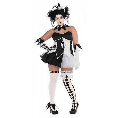 Harlequin Costume Adult Plus Size Jester Halloween Fancy Dress - Plus Size Harlequin Halloween Costume