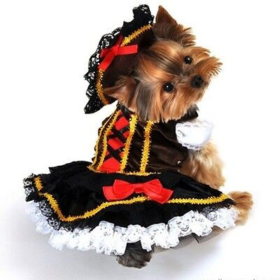 Girl Pirate Accessories (Swashbuckler Pirate Girl Dog Costume by Anit Accessories  ~ Size)