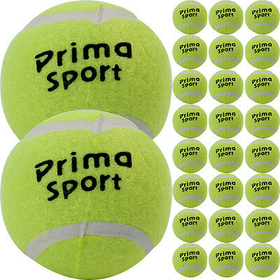 24 X TENNIS BALLS SPORT PLAY CRICKET DOG TOY BALL OUTDOOR FUN BEACH LEISURE NEW