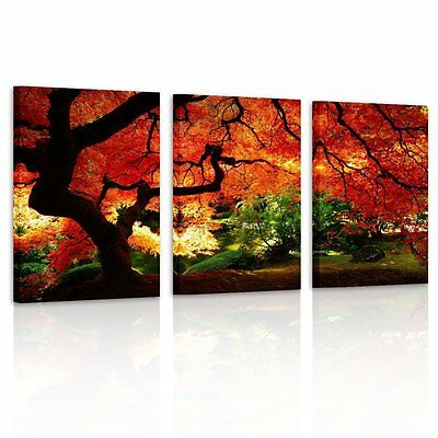 Canvas Print Wall Art Picture Paintings Photo Home Decor Landscape Trees Poster