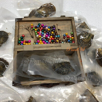 Bulk Akoya Oysters with 6-7mm Round Pearls - Located USA  ](Bulk Pearls)