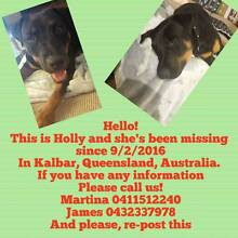 FIND HOLLY AND BRING HER HOME Kalbar Ipswich South Preview