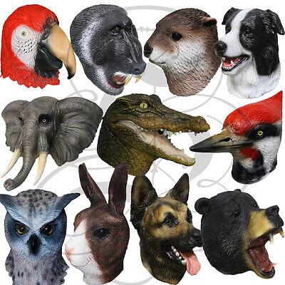 Latex Berühmt Realistische Tierkopf Aquatisch Otter Pavian Props Kostüm Masken