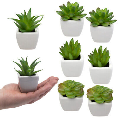 8 Mini Artificial Succulent Lot Plants Fake Succulent Plants Fake Plants