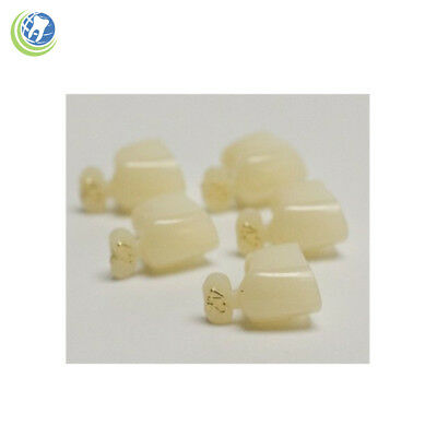 Dental Polycarbonate Temporary Crowns 42 First 1st Bicuspid Small 5pack
