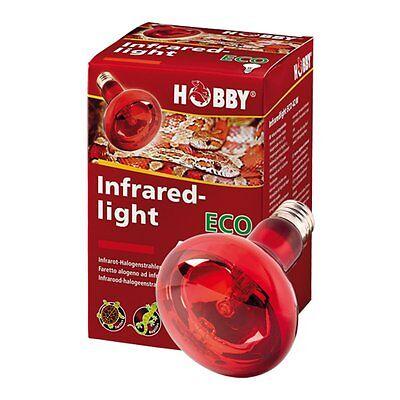 Hobby Infraredlight Eco, Infrarot-Halogenstrahler 28W Wärmelampe für Terrarien
