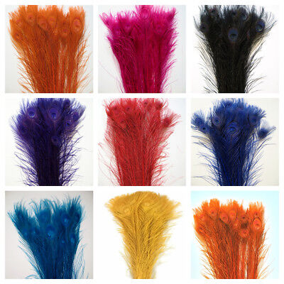 BLEACHED PEACOCK TAILS Feathers 30