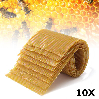 10 Pcs Honeycomb Wax Frames Beekeeping Foundation Honey Hive Equipment Tool