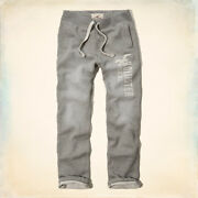 Hollister sweat Pants