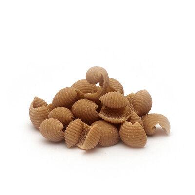 Riccioli Pasta semola integrale di grano duro Cappelli all'Aloe Vera