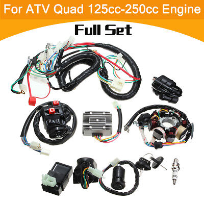 Full Electric Wiring Harness Wire Loom Coil Regulator CDI QUAD 125 200 250cc ATV