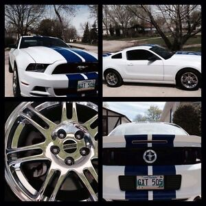2014 Mustang Low KM! 19,500 Firm