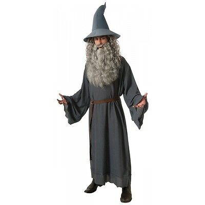 Gandalf Halloween Costume (Gandalf Costume Adult Halloween Fancy)