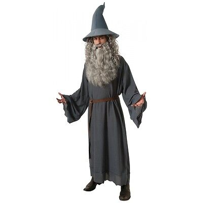 Gandalf Costume Adult Halloween Fancy Dress