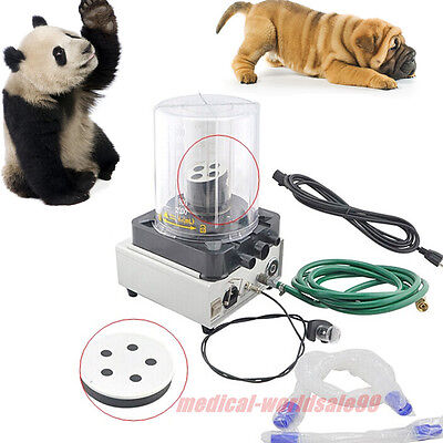 Medical Vet Anaesthesia Ventilator Beathing Machine 2 Wind Bellows Animal Sale