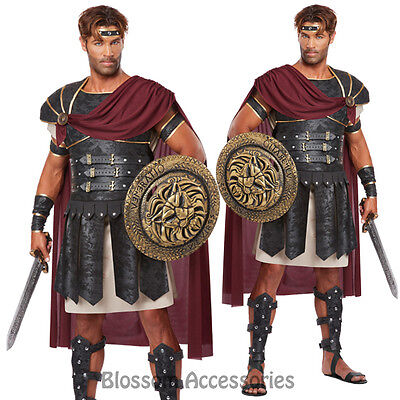 Hercules Toga Medieval Halloween Fancy Dress Mens Costume (Gladiator Toga)