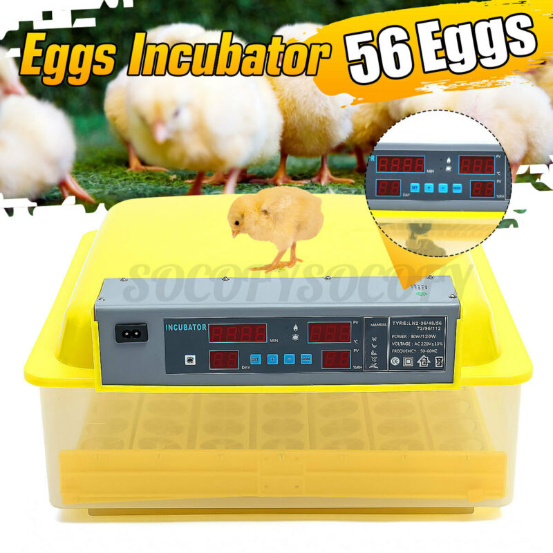 56Egg Incubator Digital Automatic Turner Hatcher Chicken Egg Temperature Control