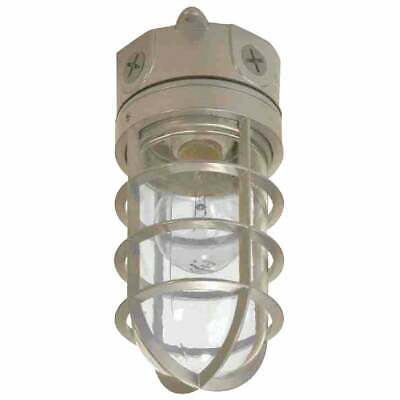 Cooper Lighting Vt100g 100w Vapor Tight Light Halo With Guard And Glass Globe