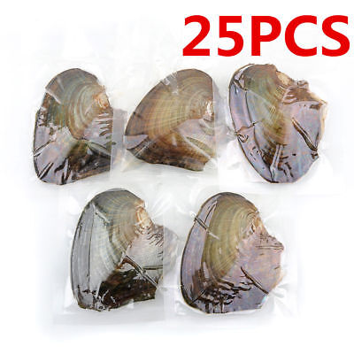 25pcs Individually Wrapped Oysters with Large Pearl Chirstmas Gift