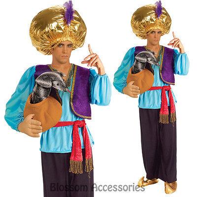 C846FN Snake Charmer Arabian Aladdin Bucks Humourous Halloween Mens Costume](Snake Charmer Halloween Costume)