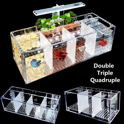 Acrylic Aquarium Baby Betta Fish Tank LED Light Breeding Hatchery Box 2/3/4 Grid Acrylic Aquarium Fish Tank