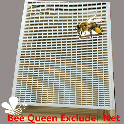 10 Frame Bee Queen Excluder Trapping Net Grid Beekeeping Honey Tool Apiculture
