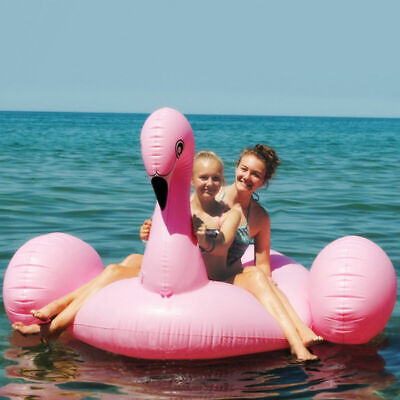 Giant Inflatable Leisure Flamingo Swan Rideable Float Swimming Pool Celebrity](Giant Inflatable Swan)