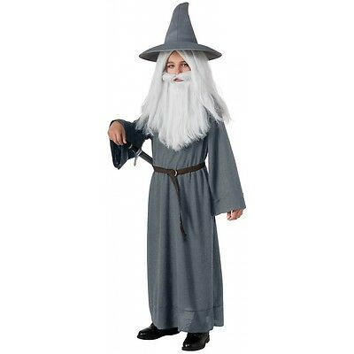 Gandalf the Grey Costume Kids The Hobbit LOTR Halloween Fancy Dress