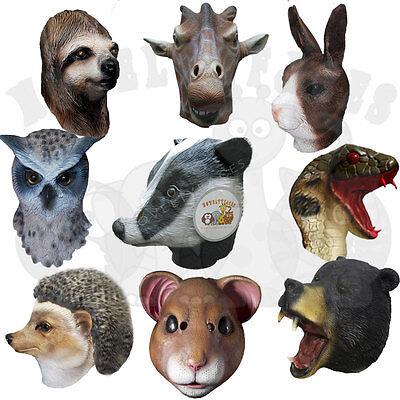Woodland Animal Costumes (Latex Animal Woodland Bear Wolf Boar Badger Lemur Fox Rat Prop Fancy Dress)