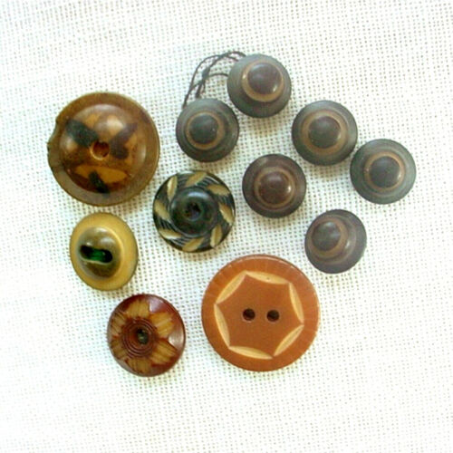 11 VINTAGE & ANTIQUE VEGETABLE IVORY BUTTONS CARVED DYED WHISTLE TAGUA BUTTON