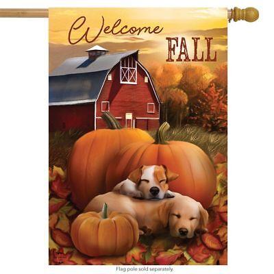 """Welcome Fall Puppies House Flag Autumn Pumpkin Farm 28"""" x 40"""