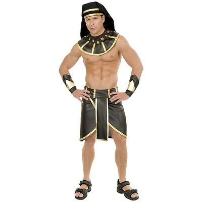 Egyptian Costume Adult Pharoah King Tut Halloween Fancy - Halloween Costumes Egyptian