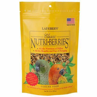 LAFEBER'S Classic Nutri-Berries Pet Bird Food for Conures 10 oz