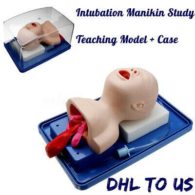 Intubation Manikin Study Baby Infant Teaching Model Airway Management Trainer 🔥 ()