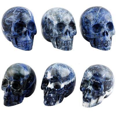 Mini Pocket Stone - Sodalite Stone Reiki Skull Head Healing Mini Pocket Figurine Home Décor 1 Inch