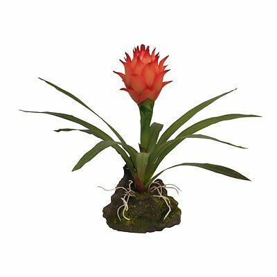 Lucky Reptile - Bromelie Cynaea rot klein - Kunststoffpflanze Deko Dekoration