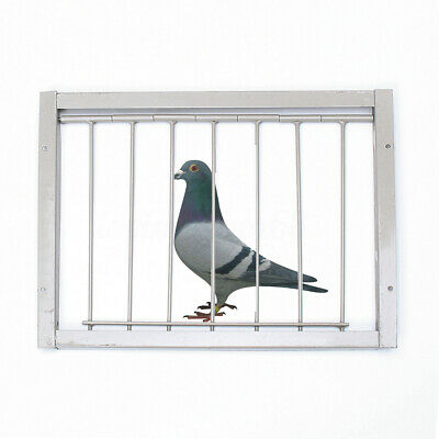 UK Bob Wires Bars Frame Racing Pigeon Entrance Trapping Door Loft Bird 12''x10''