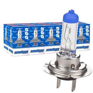 10 x H7 12V 55W  PX26d KFZ Halogenlampen Lampen Glühlampen Auto Birne