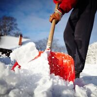 Snow removal by a licensed landscape technician!