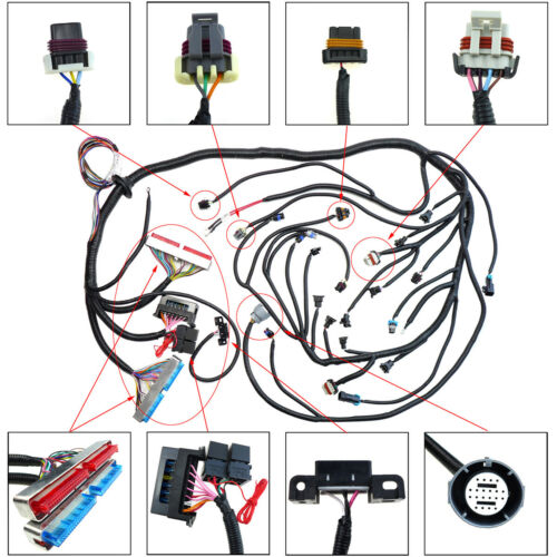 Fit For Dbc Ls1 Stand Alone Wiring Harness 4 8 5 3 6 0 W