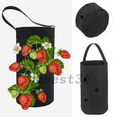 Black Hanging Strawberry Growing Bag Planter for Strawberry Garden Box Pot Solid