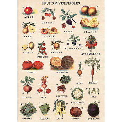 Fruit And Vegetable Chart Vintage Style Poster Decorative Paper Ephemera