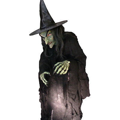 Evil Witch Ultimate Hag Adult Halloween Costume Mask Gloves and Rotting Shirt (Ultimate Halloween Costume)